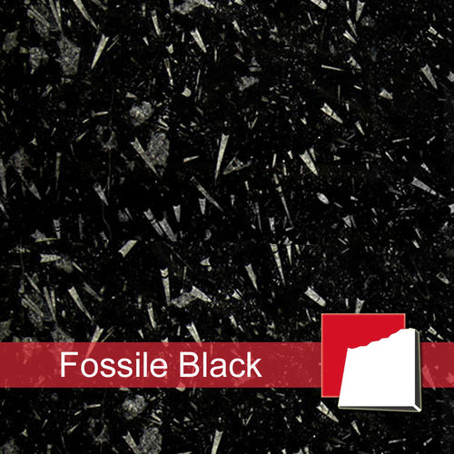 Fossile Black